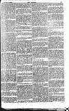 The Referee Sunday 05 February 1899 Page 3