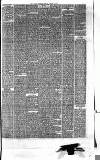 Hyde & Glossop Weekly News, and North Cheshire Herald Saturday 03 October 1874 Page 7