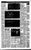 Drogheda Independent Friday 02 June 1989 Page 13