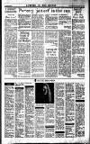 Sunday Tribune Sunday 05 February 1989 Page 31