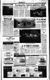 Sunday Tribune Sunday 02 April 1989 Page 29