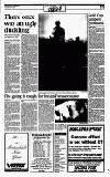 Sunday Tribune Sunday 01 January 1995 Page 31