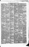New Ross Standard Saturday 09 November 1889 Page 3