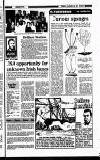 New Ross Standard Friday 30 January 1987 Page 31