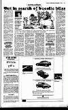 Sunday Independent (Dublin) Sunday 02 December 1990 Page 25