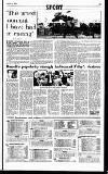 Sunday Independent (Dublin) Sunday 01 January 1995 Page 23