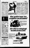Sunday Independent (Dublin) Sunday 02 July 1995 Page 3