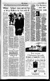 Sunday Independent (Dublin) Sunday 02 July 1995 Page 15