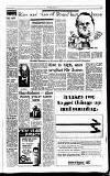 Sunday Independent (Dublin) Sunday 02 July 1995 Page 17