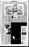 Sunday Independent (Dublin) Sunday 02 July 1995 Page 35