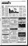 Wexford People Thursday 05 January 1995 Page 41