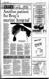 Bray People Friday 08 January 1993 Page 13
