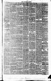 Tavistock Gazette Friday 10 February 1860 Page 3