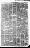Tavistock Gazette Friday 02 March 1860 Page 3
