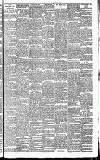 Heywood Advertiser Friday 15 November 1901 Page 7