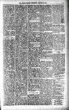 Orkney Herald, and Weekly Advertiser and Gazette for the Orkney & Zetland Islands Wednesday 31 January 1900 Page 5