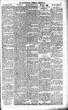 Orkney Herald, and Weekly Advertiser and Gazette for the Orkney & Zetland Islands Wednesday 28 March 1900 Page 7