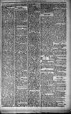 Orkney Herald, and Weekly Advertiser and Gazette for the Orkney & Zetland Islands Wednesday 23 May 1900 Page 5