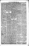 Orkney Herald, and Weekly Advertiser and Gazette for the Orkney & Zetland Islands Wednesday 06 June 1900 Page 5