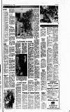 Cheddar Valley Gazette Thursday 10 January 1980 Page 13