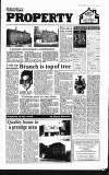 Amersham Advertiser Wednesday 29 May 1991 Page 21