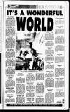 Sandwell Evening Mail Tuesday 02 January 1990 Page 33