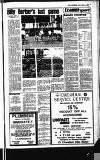 Buckinghamshire Examiner Friday 04 April 1980 Page 7