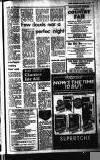 Buckinghamshire Examiner Friday 13 June 1980 Page 13