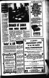Buckinghamshire Examiner Friday 13 June 1980 Page 17