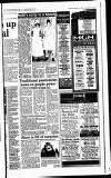 Hayes & Harlington Gazette Wednesday 11 January 1995 Page 41