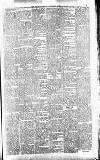 Orcadian Saturday 02 March 1901 Page 5