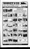 Crawley News Wednesday 04 December 1991 Page 53