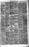 Portadown News Saturday 17 March 1900 Page 7