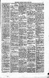 People's Advocate and Monaghan, Fermanagh, and Tyrone News Saturday 08 April 1876 Page 5
