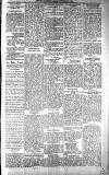 People's Advocate and Monaghan, Fermanagh, and Tyrone News Saturday 10 February 1894 Page 5