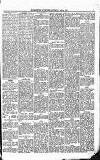 Blairgowrie Advertiser Saturday 10 January 1885 Page 5