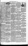 Clarion Saturday 06 February 1892 Page 5