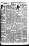Clarion Saturday 06 February 1892 Page 7