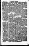 North British Agriculturist Wednesday 26 December 1866 Page 19