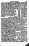 North British Agriculturist Wednesday 07 September 1870 Page 7