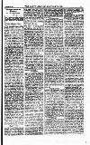 North British Agriculturist Wednesday 03 January 1883 Page 13