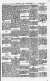 South Yorkshire Times and Mexborough & Swinton Times Friday 02 August 1878 Page 5