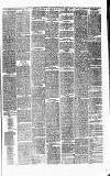 Alderley & Wilmslow Advertiser Friday 26 February 1875 Page 3