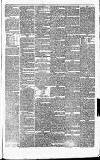 Halifax Guardian Saturday 20 March 1852 Page 5