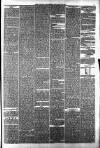 Halifax Guardian Saturday 06 January 1877 Page 7