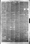 Halifax Guardian Saturday 24 March 1877 Page 7