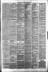 Halifax Guardian Saturday 14 April 1877 Page 3