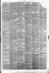 Halifax Guardian Saturday 07 July 1877 Page 3