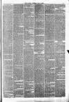 Halifax Guardian Saturday 07 July 1877 Page 7