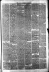 Halifax Guardian Saturday 03 November 1877 Page 7